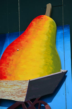 colorful pear sign in vermont  all rights reserved Ernest J. Bordini, Ph.D.