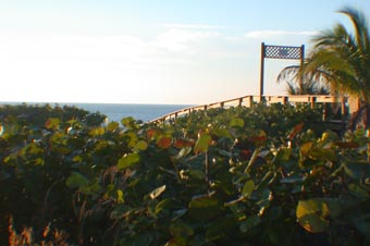 sanibel walkway bridge to recovery
